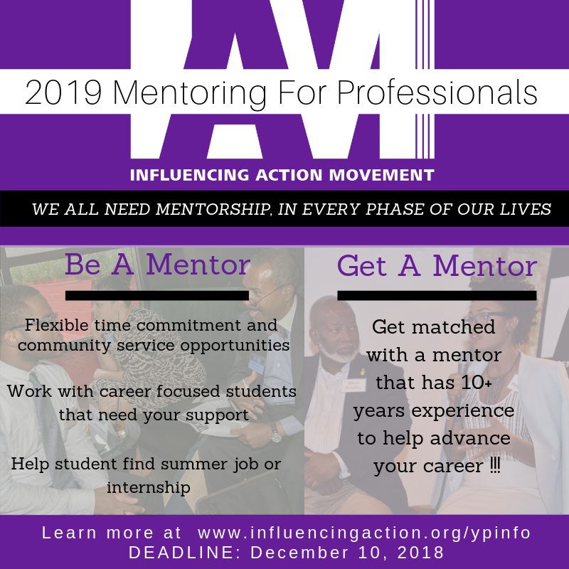 IAM Mentoring for Professionals 2018-2019